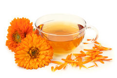 Herbal calendula tea Royalty Free Stock Image
