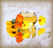 Herbal calendula tea Stock Photo