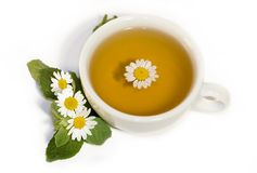 Herbal camomile tea Royalty Free Stock Images
