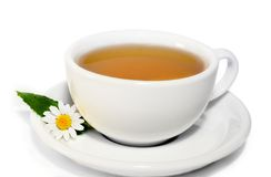 Herbal camomile tea. Herbal camomile green tea isolated on white Royalty Free Stock Photos