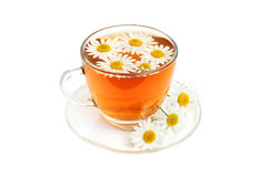 Herbal camomile tea Royalty Free Stock Image