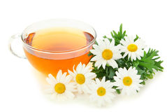 Herbal camomile tea Royalty Free Stock Photography