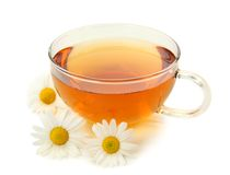 Herbal camomile tea Stock Images