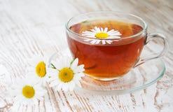 Herbal camomile tea Stock Photos