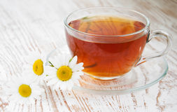 Herbal camomile tea Royalty Free Stock Photos