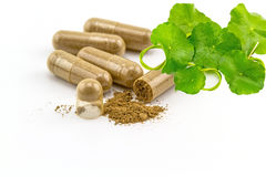 Herbal capsule and Green Asiatic Pennywort on white Stock Image