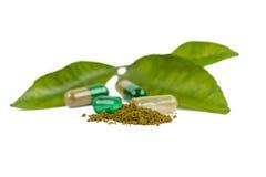 Herbal capsules Stock Image