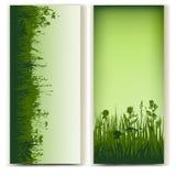 Herbal card Stock Photos