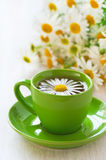 Herbal chamomile tea Stock Photography