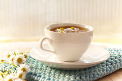 herbal chamomile tea Stock Images