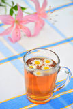 Herbal chamomile tea Royalty Free Stock Images