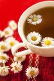 Herbal chamomile tea Royalty Free Stock Image