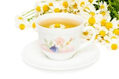 Herbal chamomile tea on white background Stock Images