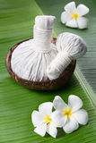 Herbal compress ball in a coconut bowl with frangipani Stock Images