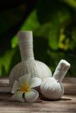 Herbal compress Royalty Free Stock Photos