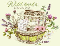Herbal cosmetics basket. Vector vintage template illustration of hand-drawn basket with wild flowers, herbs and natural products. Design for cosmetics, store Royalty Free Stock Image