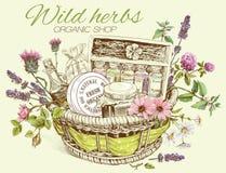 Herbal cosmetics basket Royalty Free Stock Image