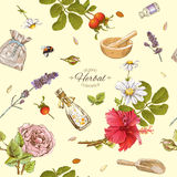 Herbal cosmetics pattern. Vector herbal cosmetics seamless pattern with wild flowers and herbs.Background design for cosmetics, store, beauty salon, natural and Stock Photography