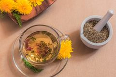 Herbal tea - alternative medicine stock images