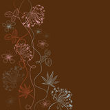 Herbal decorative background Royalty Free Stock Images