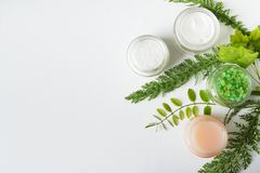 Herbal dermatology cosmetic hygienic cream, salt, gel with greenery . skincare product in glass jar on white background copy space.  royalty free stock images