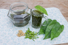 Herbal drink Stock Images