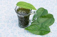 Herbal drink Royalty Free Stock Photography