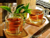 Herbal drink Stock Photography