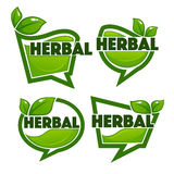 Herbal drinks vector collection Royalty Free Stock Photo
