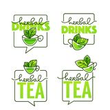 Herbal drinks vector line art logo with handrawn lettering compo Stock Photos