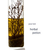 Herbal Essence. Grassy infusion in a transparent bottle Royalty Free Stock Photos