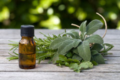 Herbal essence with sage and rosemary royalty free stock images