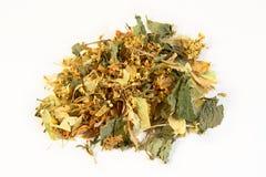 Herbal evening  tea, isolated on white background. Herbal feel good evening tea ingredients:  St. John's-wort, lemon balm leaves, lime tree flowers, meadowsweet Stock Image