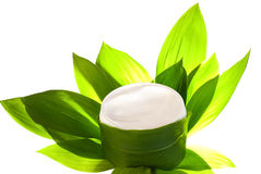 Herbal face cream Royalty Free Stock Photography