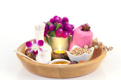 Herbal facial mask Body skin care Soybeans, mixed with warm water, natural spa skin.  Stock Image