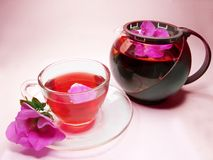 Herbal floral tea with wild rose Royalty Free Stock Images