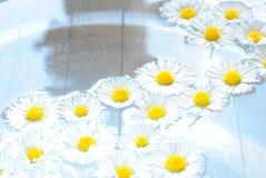 Herbal flowers in bowl Stock Photo