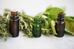 Herbal green leaves essential oil bottles with spiced herbs , ro Stock Photos