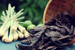 Herbal hair care, soap berry, citronella Stock Images