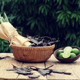 Herbal hair care, soap berry, citronella Stock Photography