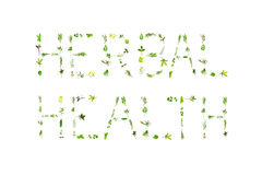 Herbal Health. Large selection of herb leaf sprigs, spelling the words herbal health, over white background royalty free stock image