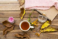 Free Herbal Healthy Drinks Hot Lemon Tea Of Lifestyle Relax In Autumn Season Royalty Free Stock Image - 158547776