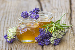 Herbal honey with fresh herbs Stock Image