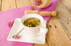 Herbal infusion. Cup with a hot valerian infusion, a still life royalty free stock photos