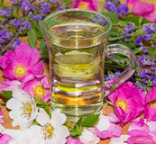 Herbal infusion of Dog rose and Sage Royalty Free Stock Images