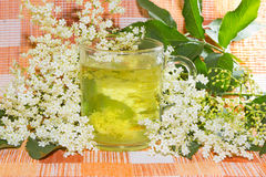 Herbal infusion of Elder or Sambucus blossoms Royalty Free Stock Photo