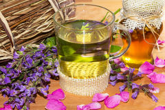 Herbal infusion with Honey. Sweet herbal tea or infusion with honey and sage for cold winter days, helps to prevent to prevend sore throat.t Stock Image