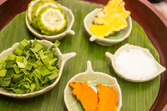 Herbal ingredient for spa massage. Herbal Thai ingredient for relaxing spa massage Stock Photo