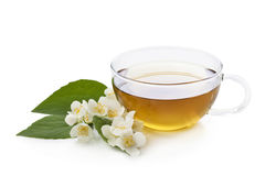 Herbal jasmine tea Royalty Free Stock Images