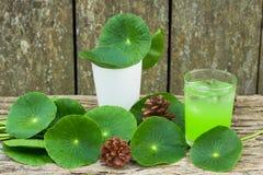 Herbal juice from Centella asiatica,wooden scene,Centella asiatica,Gotu kola.  Royalty Free Stock Images